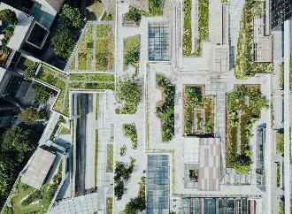строительство в зеленой зоне города